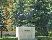 Shagya (ló) szobor a ménesudvarban